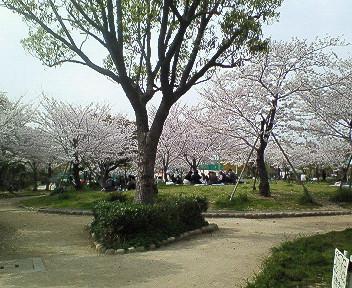 さくら塚口椀田公園.jpg