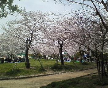 さくら塚口椀田公園2.jpg