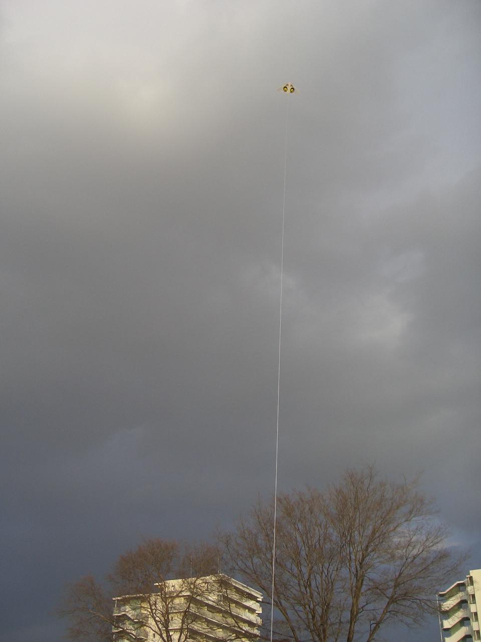 2009.2.11ゲイラカイト 003.jpg