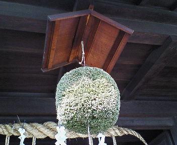 酒匠館の杉玉.jpg
