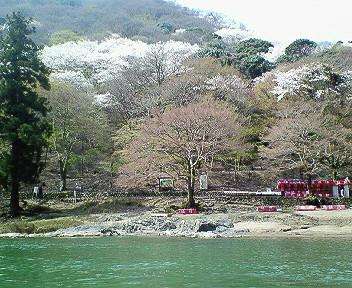 嵐山ボートから2.jpg